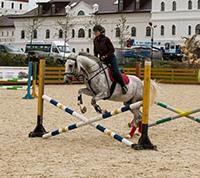 На территории «Новой Москвы» может появиться конный парк