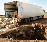 Россельхознадзор уничтожил 28 тонн санкционных овощей и фруктов, обнаруженных на базе в «новой Москве»