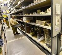 Исторический музей планирует открыть филиал в Коммунарке