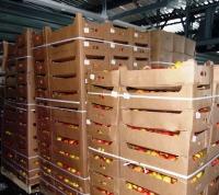 Более 32 тонн запрещенной к ввозу в РФ продукции выявлено в ТиНАО