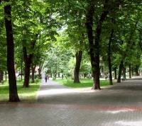 В «новой Москве» открыли новую благоустроенную зону для отдыха