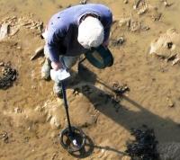 Рейд по выявлению «черных» археологов провели в «новой Москве»