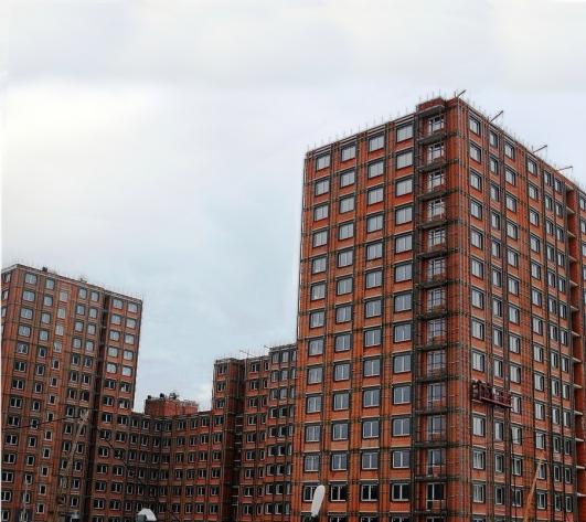 Доля монолитных жилых домов на рынке новостроек в ТиНАО составляет почти 80%