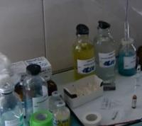 """В """"Новой Москве"""" стартует бесплатная вакцинация домашних животных"""