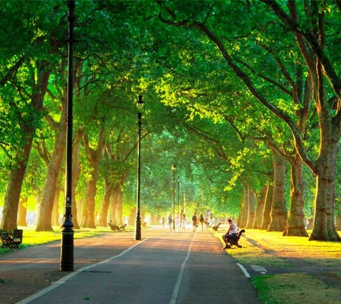 В «новой Москве» создано 13 парков за пять лет