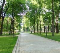 Организована рабочая группа по развитию парковых зон в «Новой Москве»