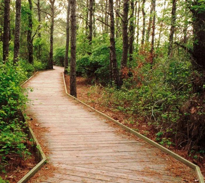Тропа для скандинавской ходьбы откроется в комплексе «Глория Парк» 19 мая