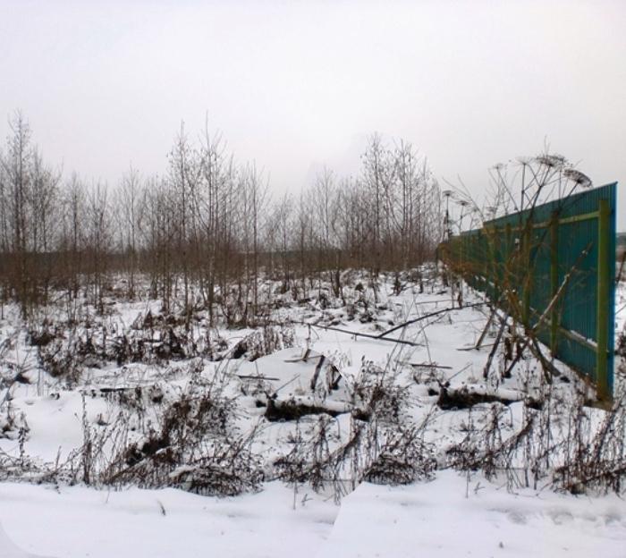 Строительство ремонтной базы в деревне Марушкино в ТиНАО отменили