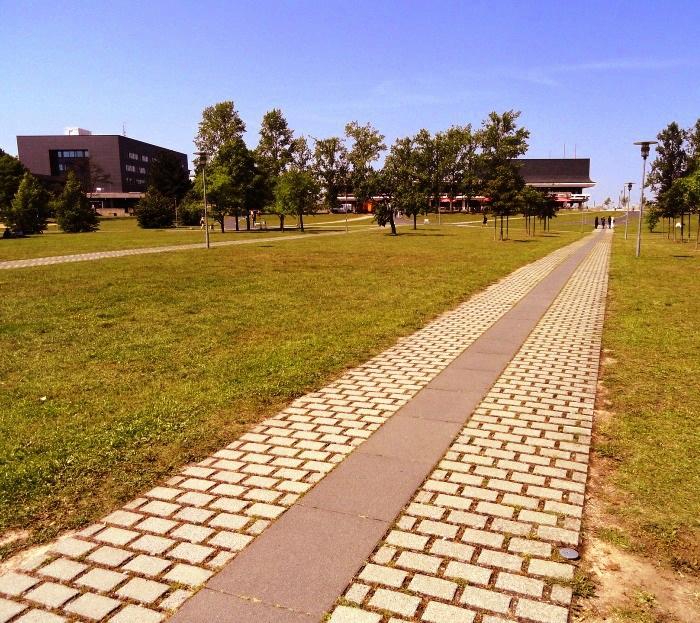 Строительство 10 крупных образовательных кампусов планируют на территории ТиНАО