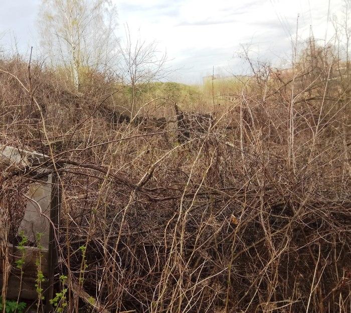 Земельный участок в поселении Щаповское выставят на торги