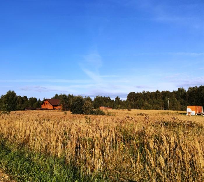 Коттеджный поселок площадью более планируют построить в «новой Москве»