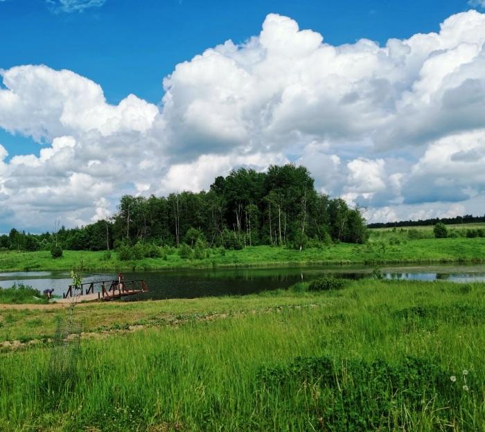 Пятнадцать договоров на земельные участки в границах особо охраняемых зеленых территорий было заключено с начала года в ТиНАО